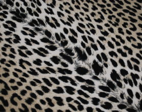 Tessuti Leopardati 1